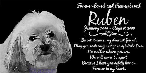 Personalized Havanese Dog Pet Memorial 12''x6'' Engraved Black Granite Grave Marker Head Stone Plaque RUB1 by Lazzari Collections (Image #1)
