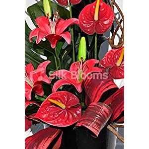 Beautiful Red Stargazer Lily and Anthurium Floral Table Arrangement 2