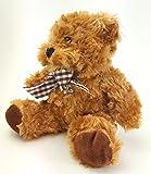 Graduation Class Of 2017 Follow Your Dreams Teddy Bear