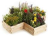 Naturalyards Raised Garden Bed, X-Shaped (Cedar, 3'x9'x9'x11'')