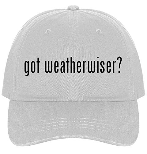 The Town Butler got Weatherwiser? - A Nice Comfortable Adjustable Dad Hat Cap, White (Weatherwise Instruments)