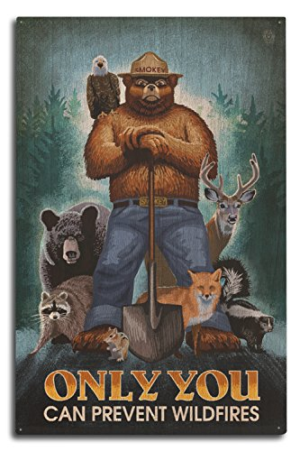 (Lantern Press Smokey Bear - Only You Can Prevent Wildfires (10x15 Wood Wall Sign, Wall Decor Ready to Hang))