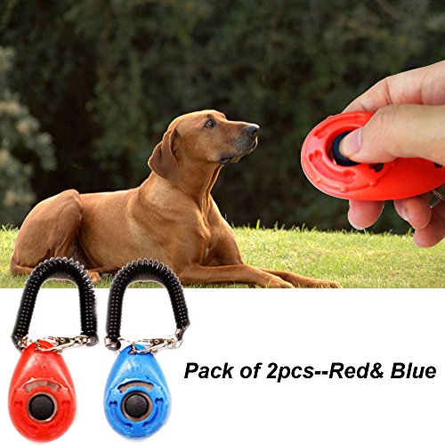 Pack of 2pcs Dog Training Clicker with Wrist Strap, Pet Accessories Big Button Pet Training Clicker Set- click and train dog, cat, horse, pets by CC Gift(Red& Blue)