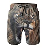 Roaring Lion Ebullient Gentlemen Sweatpants 8.82oz 2017 Summer