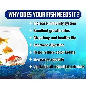 Boltz Fish Food for Growth & Health, Nutritionist Choice – 400 gm