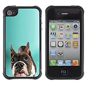Suave TPU Caso Carcasa de Caucho Funda para Apple Iphone 4 / 4S / Staffordshire Bull Terrier Green Dog / STRONG