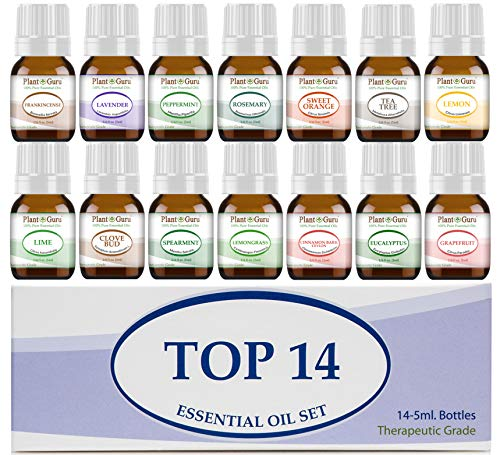Essential Oil Set 145 ml Therapeutic Grade 100% Pure Frankincense Lavender Peppermint Rosemary Orange Tea Tree Eucalyptus Grapefruit Lemon Lime Clove Spearmint Lemongrass Cinnamon
