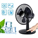 GLOBAL VASION Mini USB Oscillating Desk Fan, 2 Speed