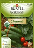 Burpee 67455 Organic Cucumber Bush Champion Seed Packet
