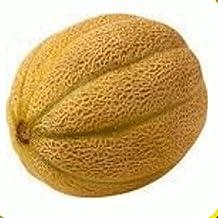 Everwilde Farms - 1 Oz Honey Rock Melon Seeds - Gold Vault