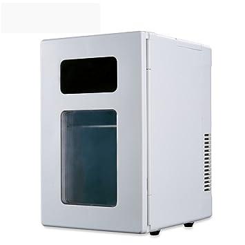 DHG Caja portátil de calefacción y refrigeración para automóvil DE ...