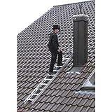 Dachleiter Alu natur 7 Sprossen 2,0 mtr.