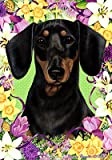 Dachshund B/T – Tamara Burnett Easter Flowers Large Flags For Sale