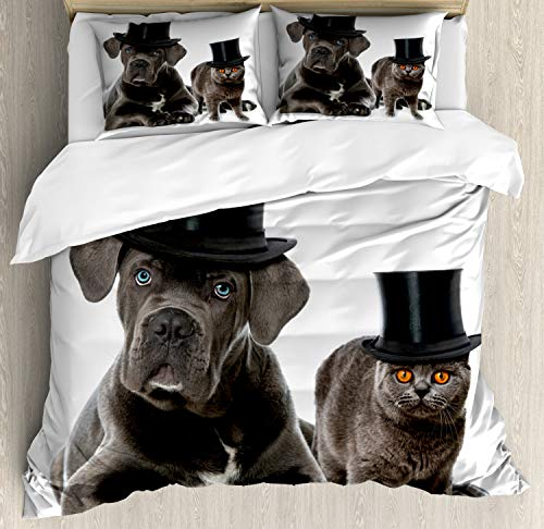 Ambesonne Dog and Cat Duvet Cover Set King Size, Cane Corso and a Kitten in Cylinder Magician Hats, Decorative 3 Piece Bedding Set with 2 Pillow Shams, Charcoal Grey Cinnamon Sea Blue Dimgray