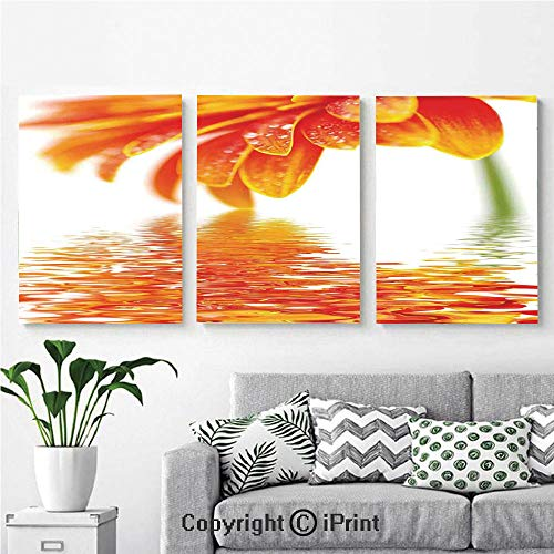 Elite Panel Reflections - Modern Gallery Wrapped Canvas Print Sun Flower Reflection on Water in a Rainy Day with Leaves in a Water River Photo 3 Panels Pictures on Canvas Wall Art Ready to Hang for Living Room Kitchen Home De