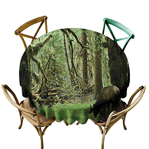 Zmstroy Oil-Proof and Leak-Proof Tablecloth Rainforest Roosevelt Elk in Rainforest Wildlife National Park Washington Antlers Theme Party D59 Green ()