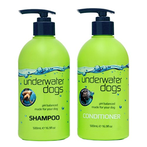 The 8 best underwater dog shampoo