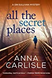 Image of All the Secret Places: A Gin Sullivan Mystery