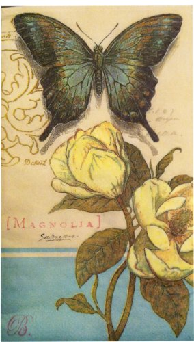 NS / 16 PC COUNT (Magnolia & Butterfly, Guest: 15.66 in  x  11.66 in) (Designer Napkins)