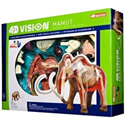 Tedco 4D Vision Woolly Mammoth Anatomy Model