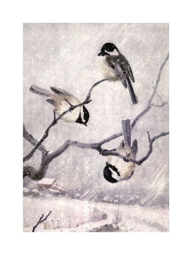 The Art Stop Painting Animal Chickadee Birds Winter HORSFALL Print F12X4461