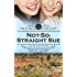 Not-So-Straight Sue (Girl Meets Girl Book 2)