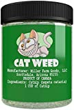 Cheap Cat Weed Catnip has Maximum Potency Premium Blend Nip That Your Cats to Go Crazy Over (1 Cup)