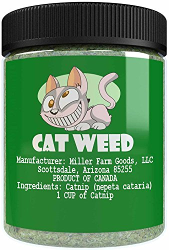 Cat Weed Catnip Has Maximum Potency Premium Blend Nip That Your Cats To Go Crazy Over  1 Cup