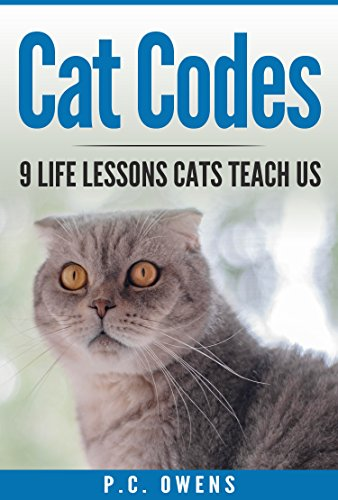 Cat Codes: 9 Life Lessons Cats Teach Us (Cats, Kittens, Pets, Pouncing Cats)