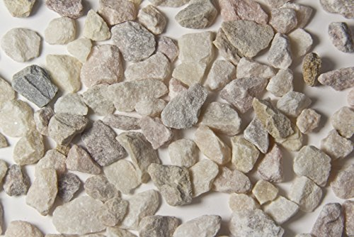Limestone Flooring - Walttools Terrazzo Grade Decorative Aggregate Stones for Countertops, Terrazzo Flooring, Outdoor Gardens, etc. (5 pounds, Salmon Marble)