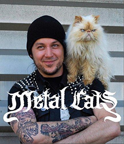 Metal Cats - Metal Indie