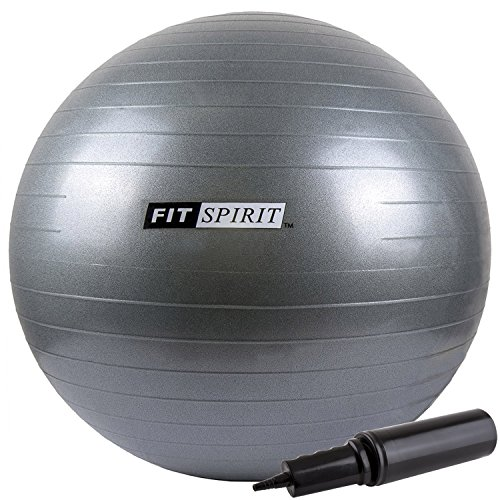 Fit Spirit Exercise Balance Ball 55cm Gray