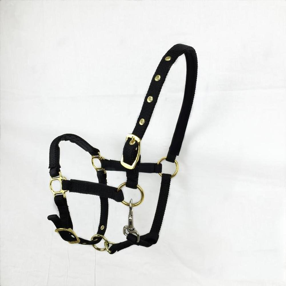 Breastplate Myyxt Equestrian Horses Leather Caballos ecuestres Bridas y riendas de Nylon (Doble línea de cartón), Negro