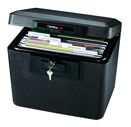 SentrySafe 1170 1/2 Hour Fireproof Security File.61 Cubic Feet, Dove Gray ()