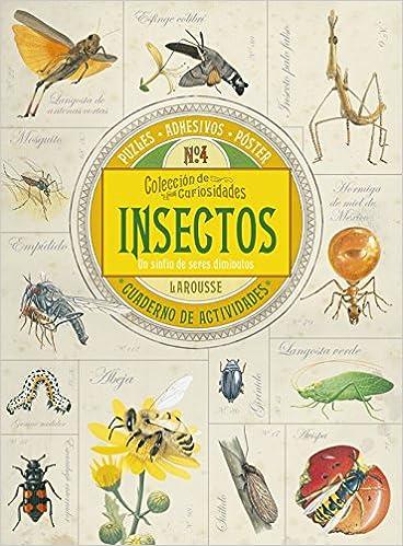 Colección de curiosidades. Insectos: Amazon.es: Larousse Editorial, Estany Morros, Imma: Libros