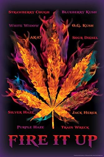 Fire-It-Up-Marijuana-Pot-Leaf-Names-College-Poster-12x18