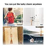 Feng-Shui Lucky-Charm Tassel Blessing Wealth