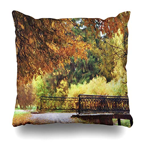 Ahawoso Throw Pillow Cover Outdoors Brown Avenue October Autumn Park Yellow Nature Alley Bright Color Design Maple Zippered Pillowcase Square Size 20x20 Inches Home Decor Pillow Case ()
