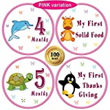 "25 Pack of 4"" Baby Monthly Stickers with Milestone & Holiday - Best Birthday Shower Gift for Girls - Watch First Year Growth Each Month - Premium Belly Onesie Stickers from All Pro Baby (Pink)"