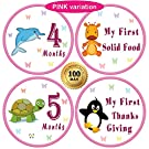 "25 Pack of 4"" Baby Monthly Stickers with Milestone & Holiday - Best Birthday Shower Gift for Boys & Girls - Watch First Year Growth Each Month - Premium Belly Onesie Stickers from All Pro Baby (Pink)"
