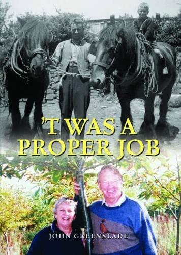 Read Online 'T Was a Proper Job pdf