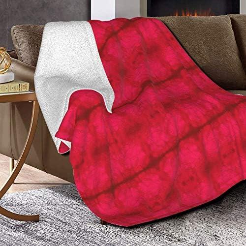 Couverture polaire légère pour porche - Couverture polaire ultra douce et moelleuse - Pour canapé, lit et salon - 127 x 101,6 cm