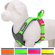 """Blueberry Pet Soft & Comfy Summer Hope 3M Reflective Padded Dog Harness Vest, Chest Girth 18.5"""" - 20.8"""", Neck 17.5"""", Fluorescent Green"""