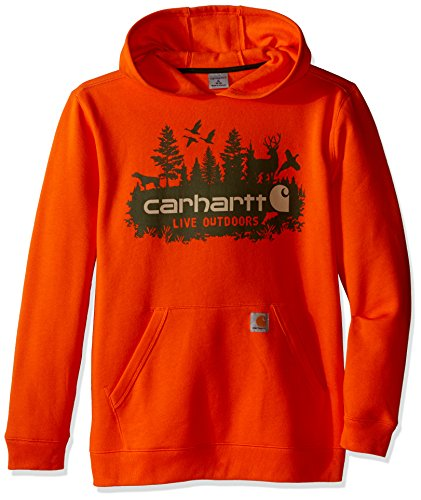 Carhartt Big Boys' Outdoors Sweatshirt, Puffin's Bill, Large