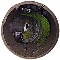 Green Cheek Conure and other medium sized bird sleeping tube