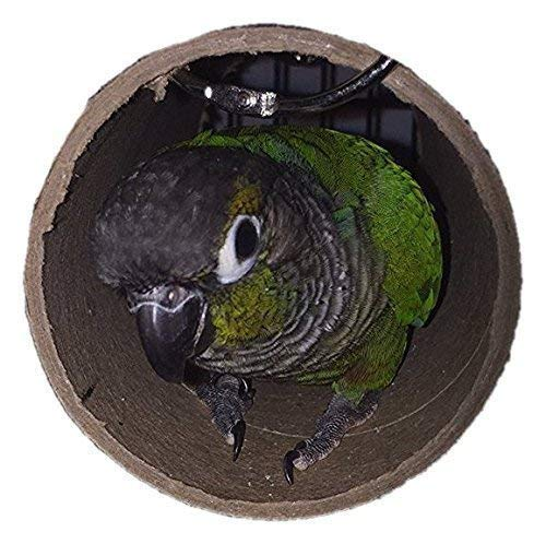 (Green Cheek Conure and other medium sized bird sleeping tube)