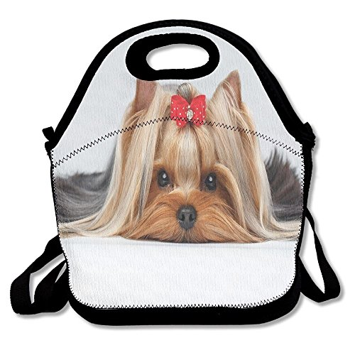JUCHen Lying Yorkshire Terrier With Cute Ribbon Yorkie Love Portrait Of A Dog Lunch Bag Tote For School Work Outdoor