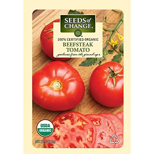 Seeds of Change Certified Organic Tomato, Beefsteak - 100 milligrams, (Grow Beefsteak Tomatoes)