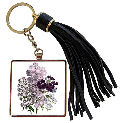3dRose BLN Vintage Flower Collection - Phlox in Shades of pink and white - Tassel Key Chain (tkc_153485_1)