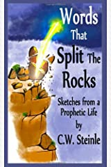 Words that Split the Rocks Paperback